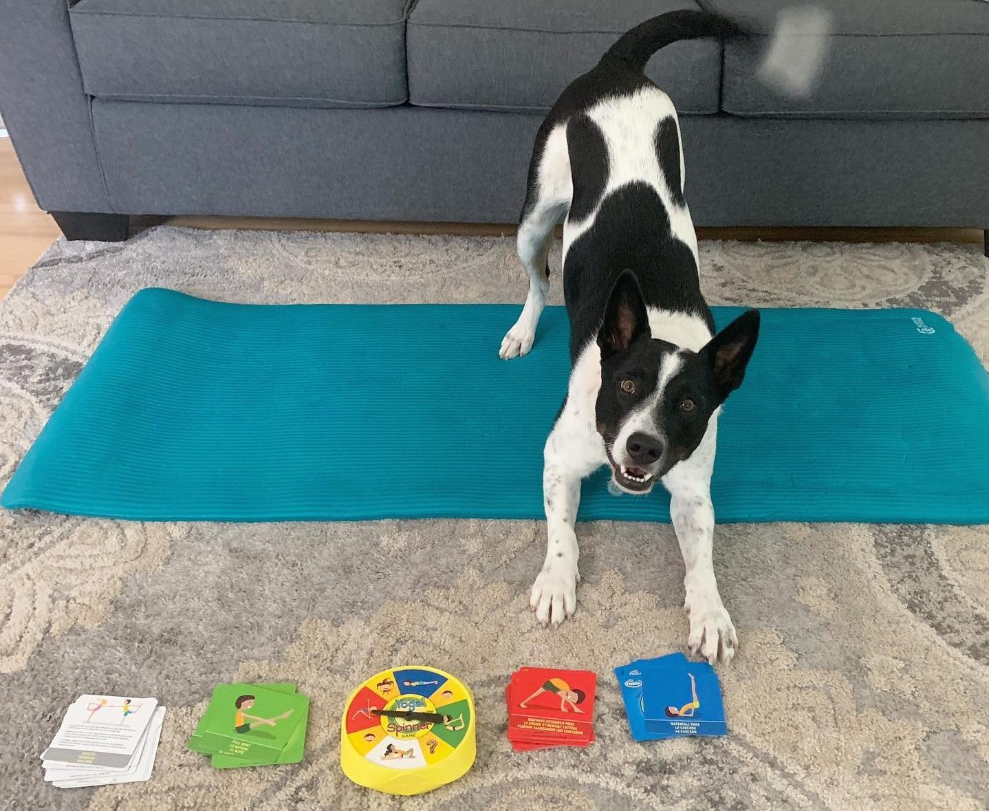 Yoga With Dottie