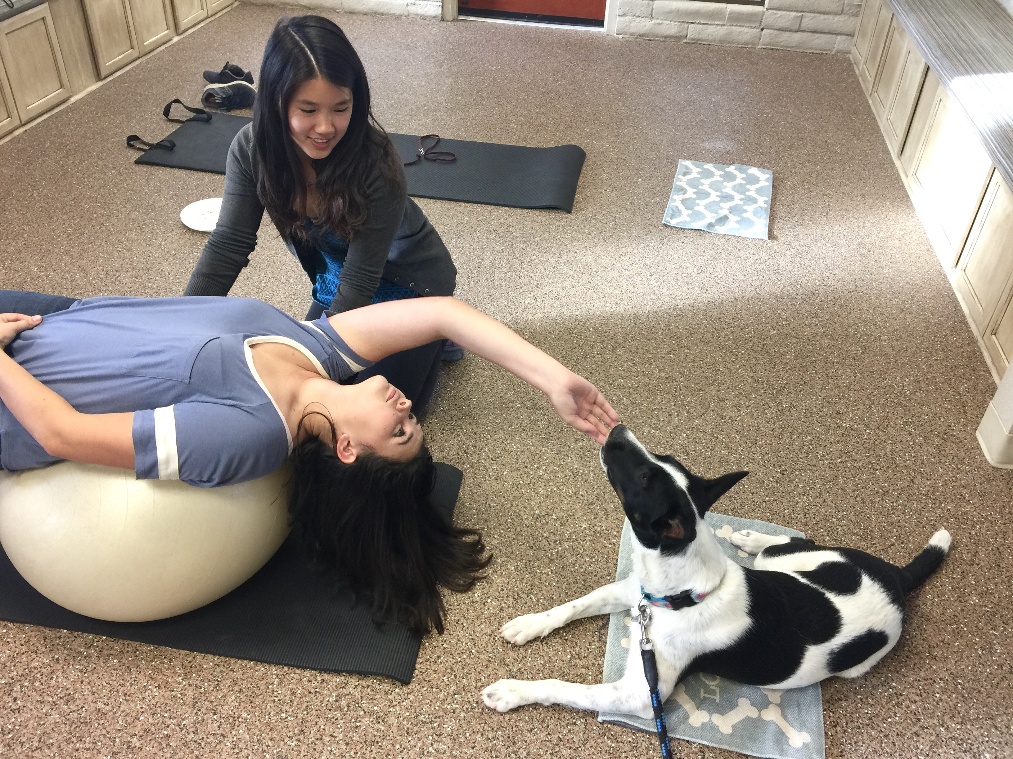 Therapy Ball Exercise