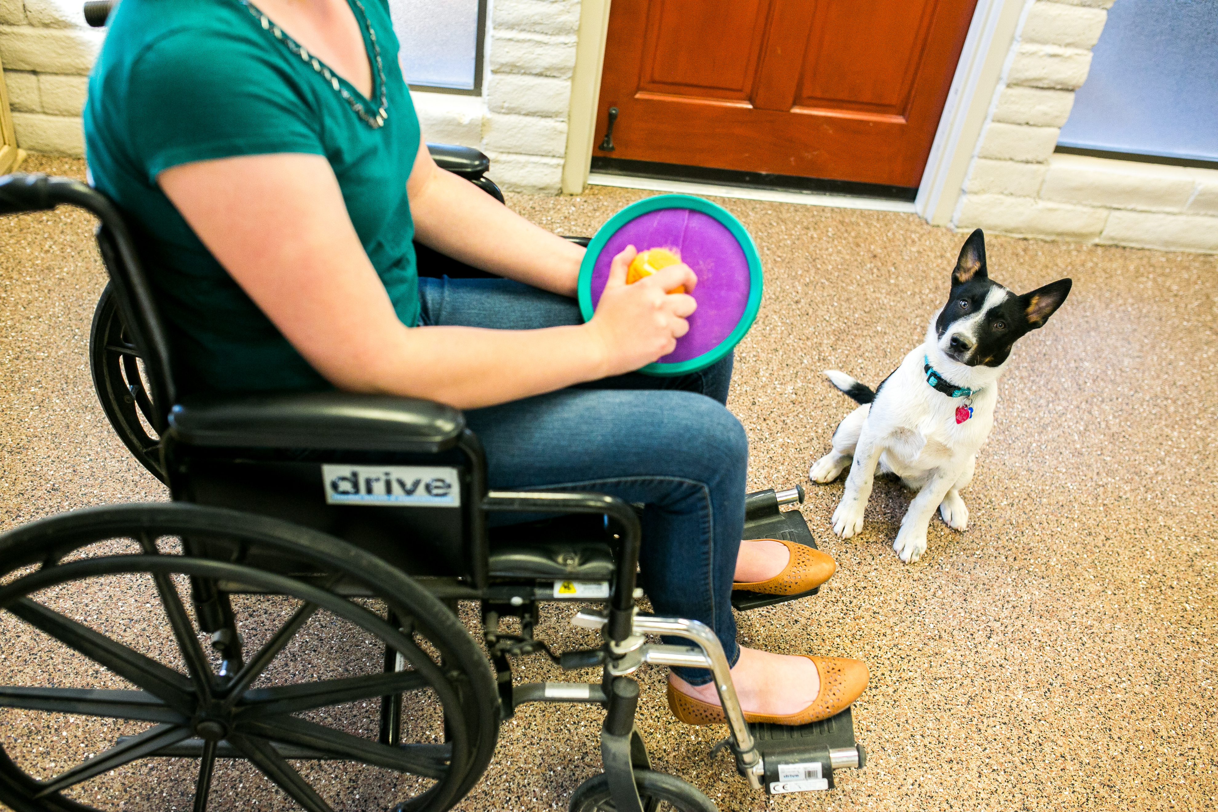 Fetch From Wheelchair