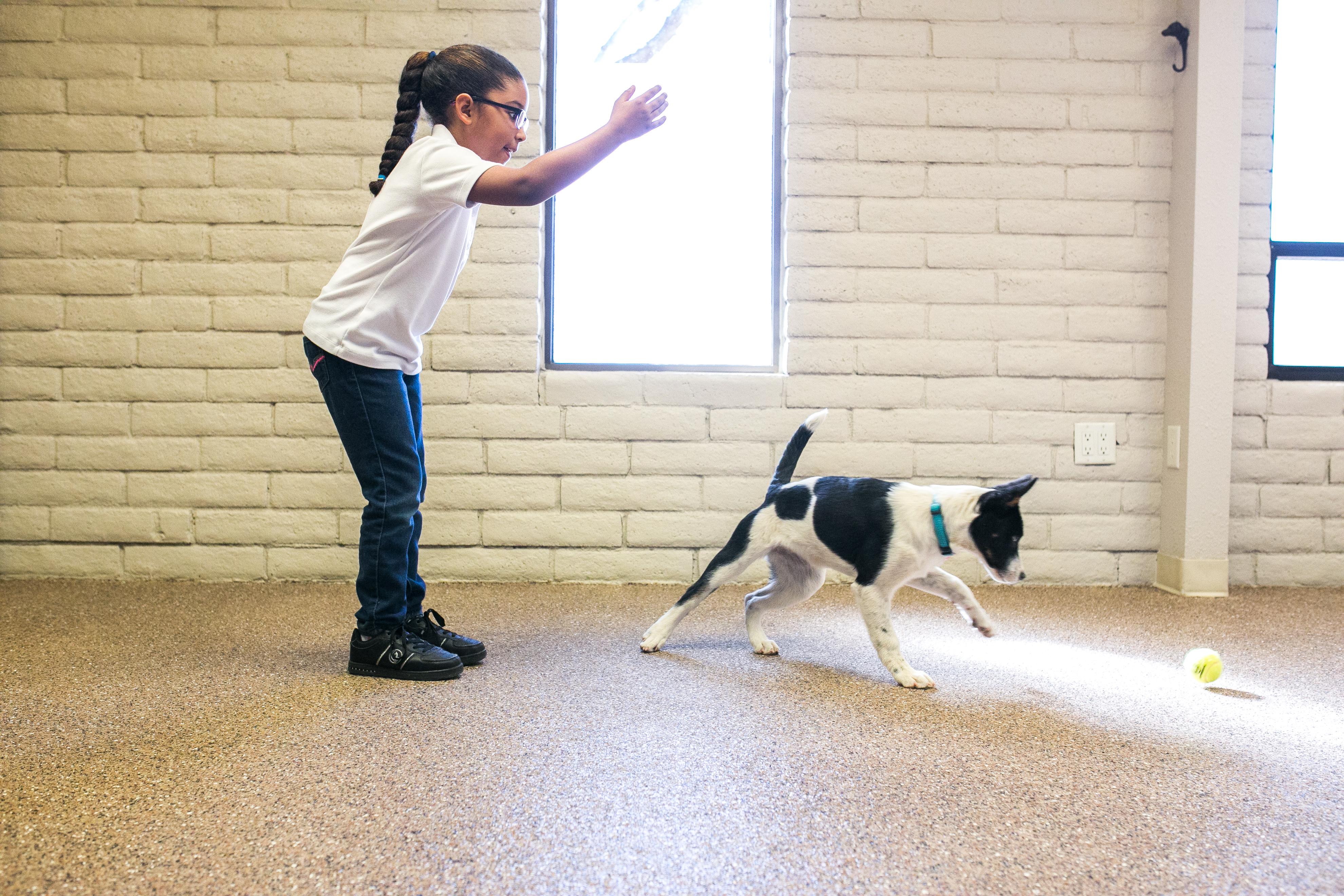 Fetch With Dottie